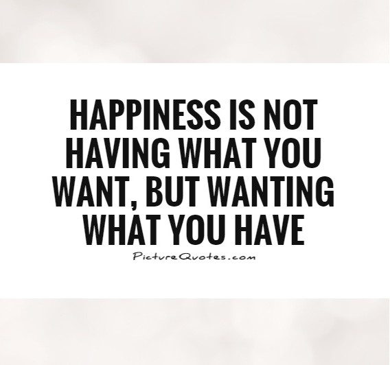 happiness-is-not-having-what-you-want-but-wanting-what-you-have